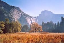 Vallée du Yosemite